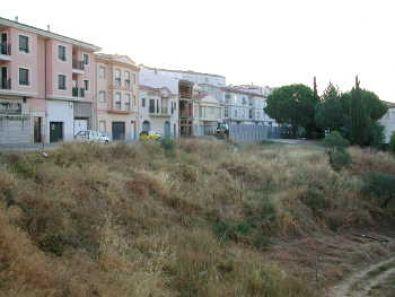 El Ayuntamiento exige la limpieza de solares y parcelas dentro de Coria