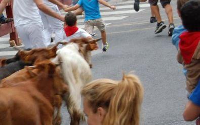 Encierro infantil con animales